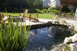 Garden Pond Installation by Stephens Industries