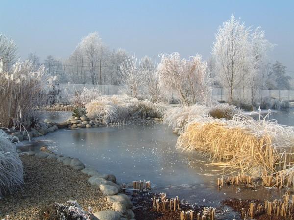 Firestone pond liner firestone pondgard for Ornamental pond liners