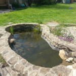 Pond Maintenance Image
